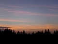 Beautiful Pastel Blue, Pink and Yellow Sunset Sky over the Silhouette of Pine Forest, Bavaria Royalty Free Stock Photo