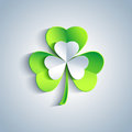 Beautiful Patricks day card gray with leaf clover Stock Photo
