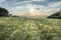 Beautiful peaceful sunset landscape image over english rolling c countryside Royalty Free Stock Image
