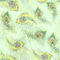 Beautiful peacock feathers seamless pattern
