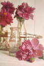 Beautiful peony flowers with bottles on table glass Stock Photo