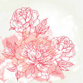 Beautiful peony greeting card design Stock Image