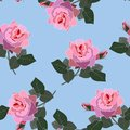 Beautiful pink blooming isolated rose flowers on sky blue background. Vintage seamless floral pattern in vector. Print for fabric