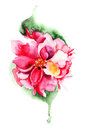 Beautiful pink flower watercolor painting Royalty Free Stock Images