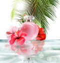 Beautiful pink perfume bottle on a background of water, hibiscus flowers and palm leafs. Summer background.Vector Royalty Free Stock Photo