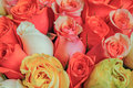 Beautiful pink and red roses flowers at a parisian flower store Royalty Free Stock Photo