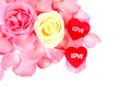 Beautiful pink white rose and red heart of love on white background Royalty Free Stock Photo