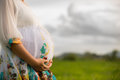 Beautiful Pregnant Asian Woman in Rice Field Stock Images