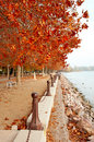 Beautiful promenade at Lake Balaton in autumn Stock Photography