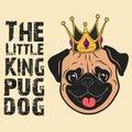 Beautiful pug Dog and crown