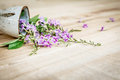Beautiful purple flowers on a wooden floor. Royalty Free Stock Photo