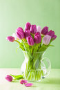 Beautiful purple tulip flowers bouquet in vase Royalty Free Stock Photo