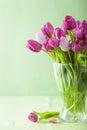 Beautiful purple tulip flowers in vase Royalty Free Stock Photo