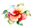 Beautiful red flower watercolor painting Royalty Free Stock Photo