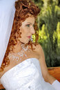 Beautiful red-hair fiancee Stock Photography