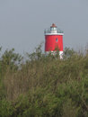 Beautiful red lighthouse tower on a forest island Stock Photography