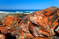 Beautiful red rocks at the coast Stock Photo