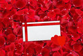 Beautiful red rose petals background and envelop letter with r ribbon Stock Photography