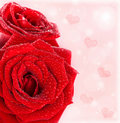 Beautiful red roses border with hearts Royalty Free Stock Photo
