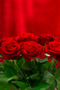 Beautiful red roses bouquet. festive arrangement Stock Images