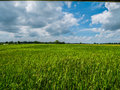 Beautiful refreshing blue sky cloud cloudy landscape background Royalty Free Stock Photo