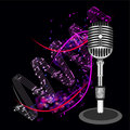 Beautiful Retro Black Vector Microphone Royalty Free Stock Photo
