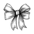 Beautiful ribbon tied in bow freehand drawing in graphic style pen and ink a Royalty Free Stock Photo