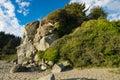 Beautiful rock with vegetation Royalty Free Stock Photo