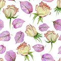 Beautiful rose flowers and leaves with veins on white background. Seamless floral pattern. Watercolor painting.