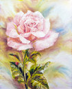 Beautiful rose oil painting on canvas Stock Photography