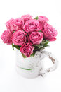 Beautiful roses bouquet of pink on white background Stock Images