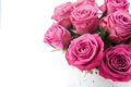 Beautiful roses bouquet of pink on white background Royalty Free Stock Photos