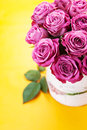 Beautiful roses bouquet of pink on yellow background Royalty Free Stock Photos