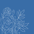Beautiful roses isolated on blue background. Hand drawn vector illustration.