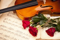 Beautiful roses and violin! Royalty Free Stock Photos