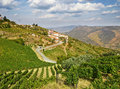 Beautiful rural landscape in the douro region portugal Stock Image