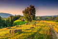 Beautiful rural landscape with hay bales,Transylvania,Romania,Europe Royalty Free Stock Photo