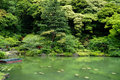 Beautiful scene of lush green japanese garden with shades of green plant, boat and lotus pond on sunny day, Beppu Royalty Free Stock Photo