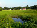 Beautiful scene of rural india village in north bengal Stock Photo