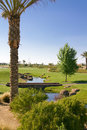 Beautiful scenic Southwest USA desert golf course Royalty Free Stock Photography