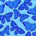 Beautiful seamless background blue butterfly many similarities to the author s profile Stock Photo