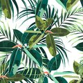 Beautiful seamless floral pattern background with tropical dark and bright ficus elastica and palm leaves.