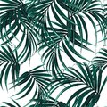 Beautiful seamless floral pattern background with tropical palm leaves. Perfect for wallpapers Royalty Free Stock Photo
