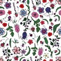 Beautiful seamless floral pattern with berries,herbs and flowers in doodling style