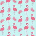 Beautiful seamless pattern with pink flamingo isolated on white