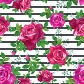 Beautiful seamless pattern with pink,red,yellow roses on a white background black stripes.