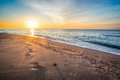 Beautiful seascape footprints on the sandy shore Royalty Free Stock Photo