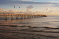 Beautiful seascape with a pier and seagulls Stock Images