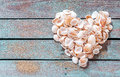 Beautiful seashell heart on rustic wood formed of multiple small bivalves cones and conches weathered wooden boards with copyspace Royalty Free Stock Photography