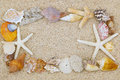 Beautiful seashells and starfish arranged as a border on sand ba Royalty Free Stock Photo